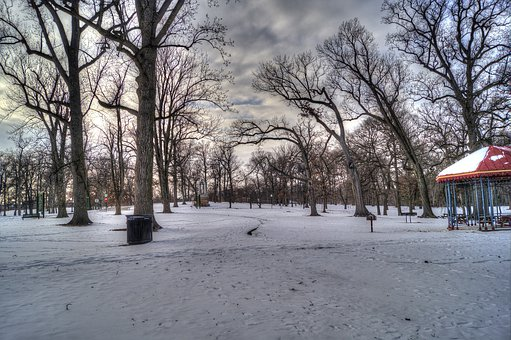 Druid Hill Park, Baltimore, Maryland, Park, Trees, Snow