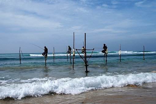 Fishing, Sea, Fisher Man, Catch, Coast, Marine, Rod