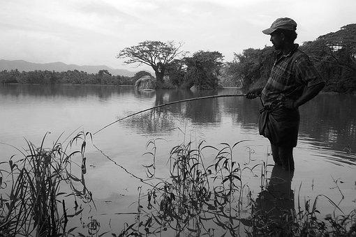 Fishing, Angler, Sea, Catch, Coast, Marine, Rod, Reel