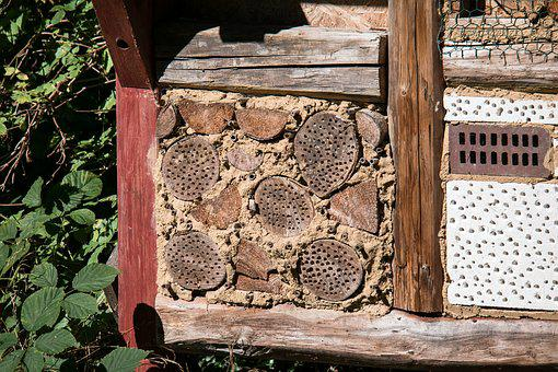 Insect Hotel, Insect, Insect House