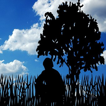 Clouds, Man, Tree, Sky, Person, Nature, Male, Outdoor