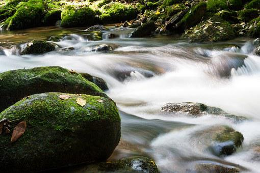 Water, Flow, Bach, River, Mood, Spring, Stone, Creek