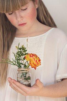 Flower, Ranunculus, Spring Flower, Schnittblume, Vase