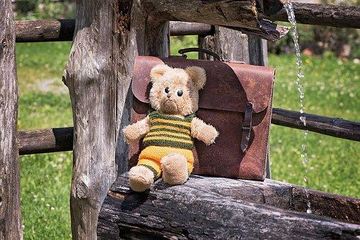 Teddy, Teddy Bear, Old, Used, Schoolbag, Leather Case