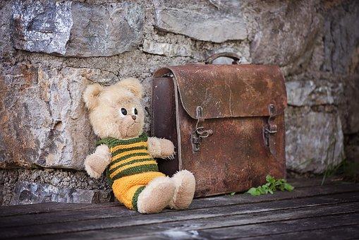 Teddy, Teddy Bear, Stuffed Animals, Stuffed Animal