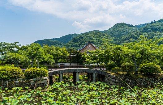 Arashiyama, Japan, Lily Pond, Bridge, Temple, Sky
