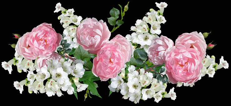 Flowers, Roses, Pink, Penstemons, White, Arrangement