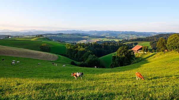 Hills, Bowl, Napfbergland, Switzerland, Distant View