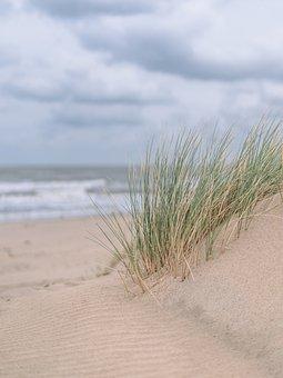 Dune, Sand, Sea, Holiday, Beach, Landscape, Summer