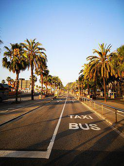 Barcelona, Spain, Morning, City, Catalonia, Street