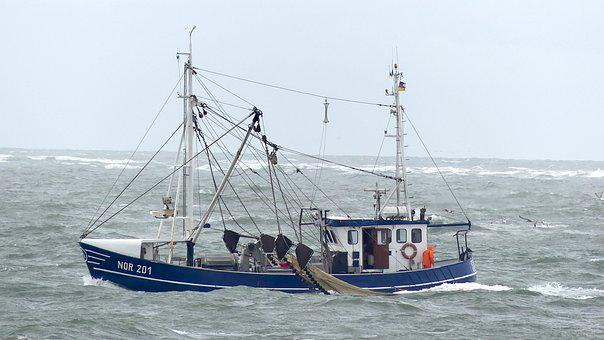 North Sea, Cutter, Crabs, Norderney