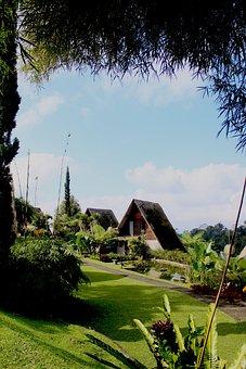 Bali, Indonesia, Villa, Village, Travel, Nature