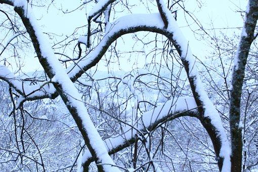Snow, Winter, Cold, Landscape, Nature, White, Wintry