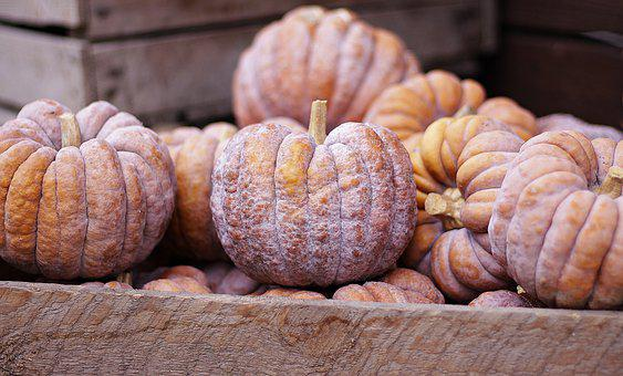 Pumpkin, Autumn, Food, Fruit, Harvest, Halloween