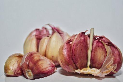 Garlic, Food, Lights, Camera, Studio, Estudio
