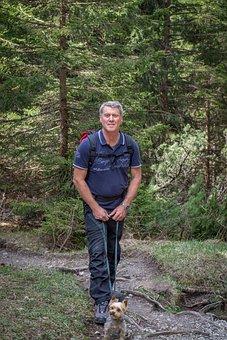 Hiking, Man, Nature, Trail, Dog, Nature Trail, Path