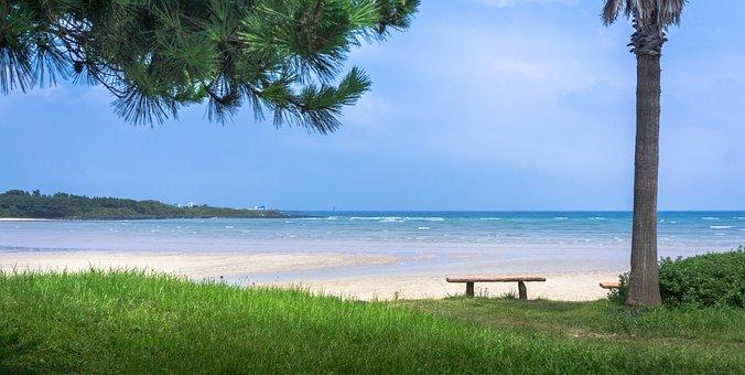 Sea, Nature, Grass, Water, Sky, Landscape, Beach