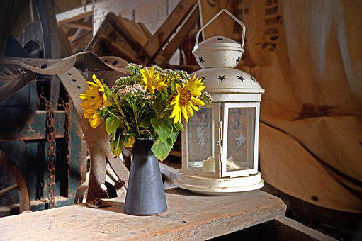 Lantern, Lamp, Candle, Flower, Light, Yard, Lighting