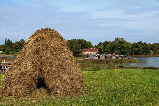 Hay, Meadow, Autumn, Baltic States, Estonia, Lake