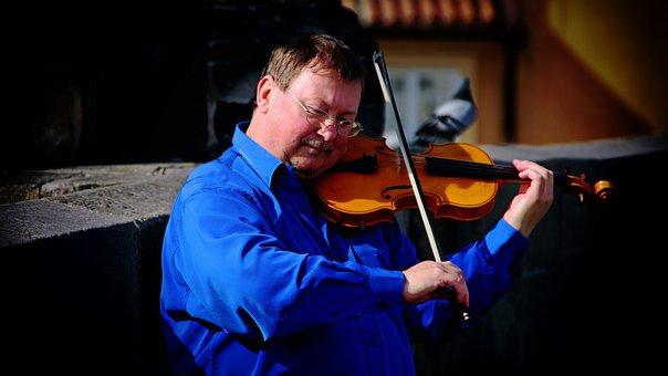 Musician, Violinist, Violin, Music, Instrument, String