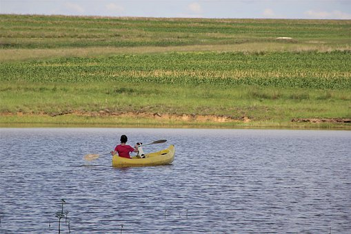 Canoe, Rowing, Yellow, Red, Dog, Child, Kayak, Canoeing