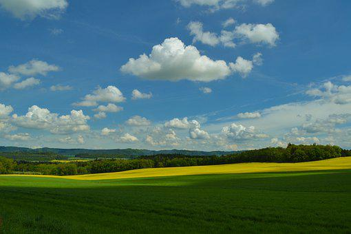 Field, Meadow, Sky, Summer, Nature, Landscape, Outdoor