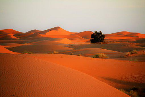 Desert, Sand, Sahara, Landscape, Nature, Sand Dunes