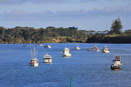 Boat, Reflection, New, Zealand, Pukenui, Ocean, Harbour
