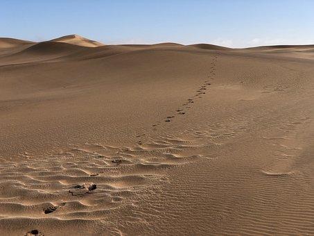 Desert, Namibia, Sand, Dune, Trace, Footprint