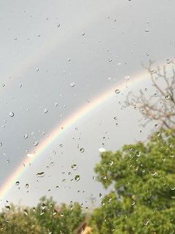 Rainbow, Drip, Raindrop, Water, Rain, Wet