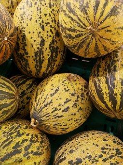 Melon, Vegetable, Fruit, Natural, Organic, Vegetarian