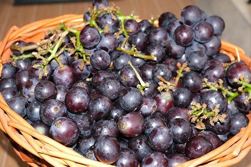 Grapes, Fruits, Wine, Winegrowing, Sweet, Vineyard