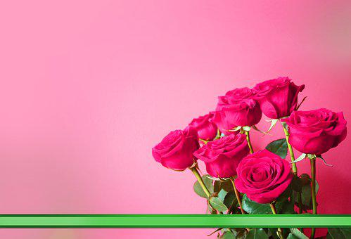 Rosa, Bouquet Of Roses, Flowers, Gift, Birthday