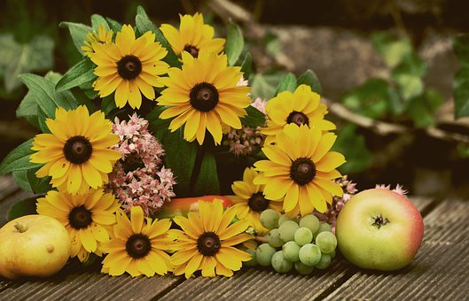 Coneflower, Flowers, Late Summer, Yellow, Garden Plant