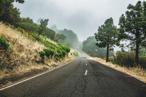 Road, Fog, Trees, Landscape, Forest, Autumn, Nature