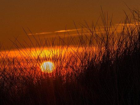 Sunset, Beach, Dunes, Mood, Grass, Rush, Abendstimmung