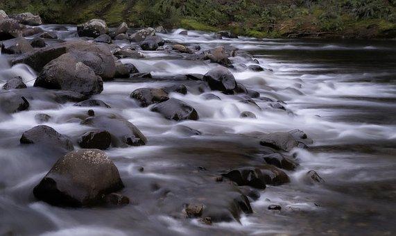 River, Rapids, Rocks, Landscape, Nature, Forest, Tree