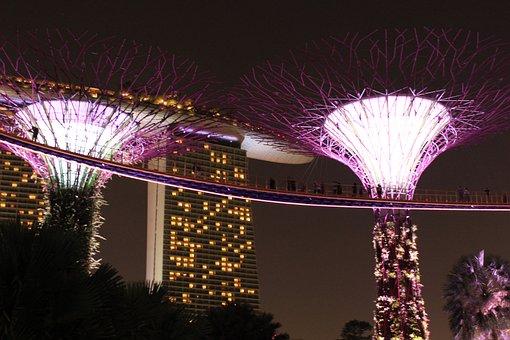 Singapore, Gardens By The Bay, Travel, Asia, Tourism