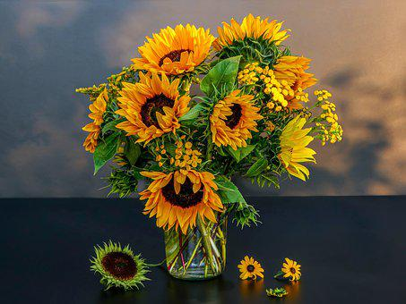 Still Life, Sunflower, Tansy, Decoration, Yellow