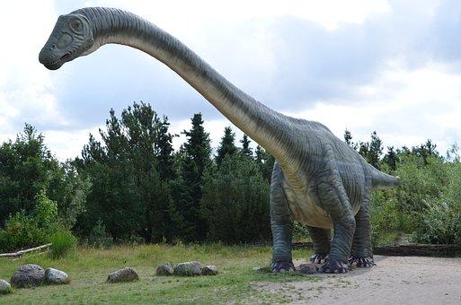 Dinosaur, Prehistoric Times, Lizards, Dino, Reptile