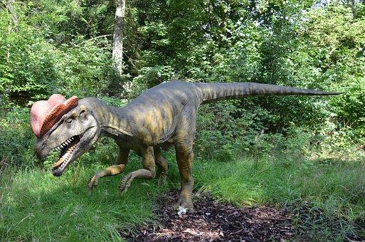 Dinosaur, Dino, Extinct, Predator, Carnivores, Tooth