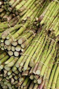 Asparagus, Green Asparagus, Green, Vegetable