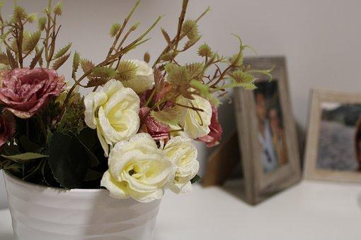 Flower, Vintage, Home, Furniture, Photography, Roses