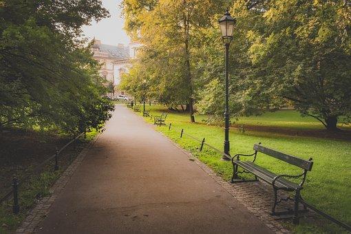 Park, Bench, Path, Trees, Morning, Summer, Lantern
