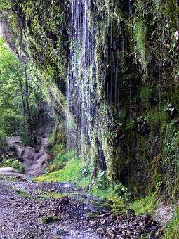 The Limestone Alps National Park, Steyrtal