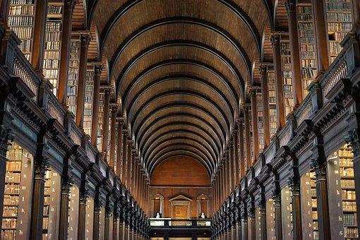 Library, University, Teaching, Study, College, Read