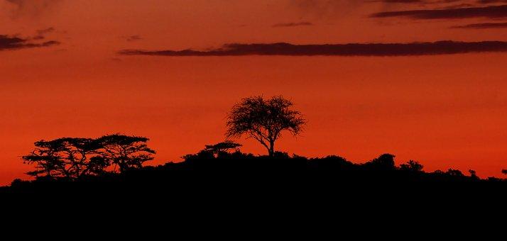 Sunset, Nature, Landscape, Horizon, Sky, Evening