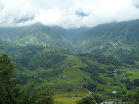 Viet Nam, Rice, Agriculture, Clouds, Mountains
