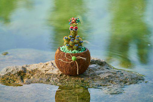 Cactus, Plant, Ornament, Decor, Nature, Decoration