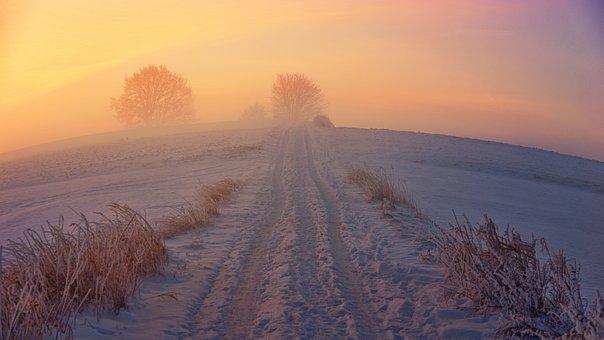Winter Way, Snow, Sunrise, Fog, Winter, Nature, Wintry